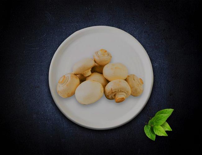 mushroom-packaging